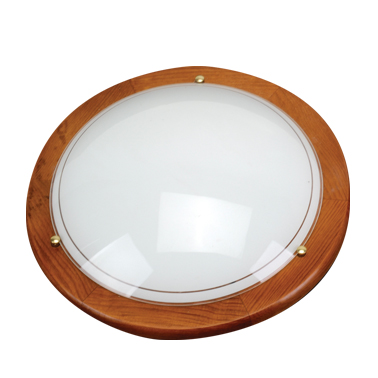 154/40 Ceiling Light